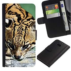 """HTC One M8 , la tarjeta de Crédito Slots PU Funda de cuero Monedero caso cubierta de piel ("""" Ocelot Feline Hunter Cute Big Cat Wild"""")"""