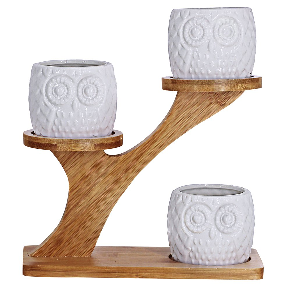 3pcs Owl Succulent Pots with 3 Tier Bamboo Saucers Stand Holder - White Modern Decorative Ceramic Flower Planter Plant Pot with Drainage - Home Office Desk Garden Mini Cactus Pot Indoor Decoration by besttoyhome (Image #2)