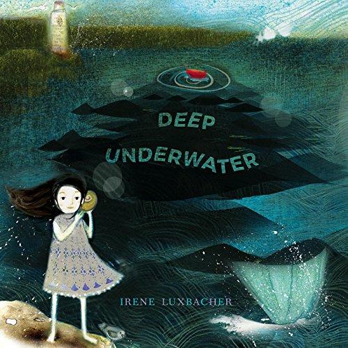 underwater housings - 4