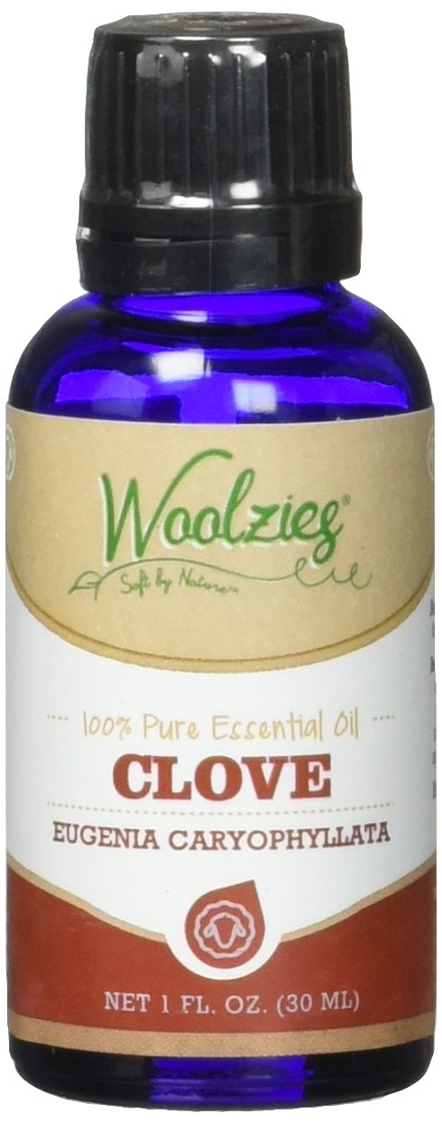 Woolzies best quality 100% pure clove essential oil, therapeutic grade, 1fl oz by Woolzies B01CFHZCAI