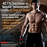 NOVEX BIOTECH TestroVax (90 count)- Natural Male Enhancer and Testosterone Boosting Compound Associated with Increased Lean Muscle Mass, Enhanced Weight-Loss, and Increased Energy