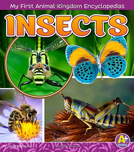 Insects (My First Animal Kingdom Encyclopedias)