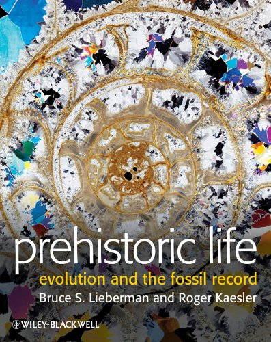 Prehistoric Life: Evolution and the Fossil Record (Fossil Pattern)