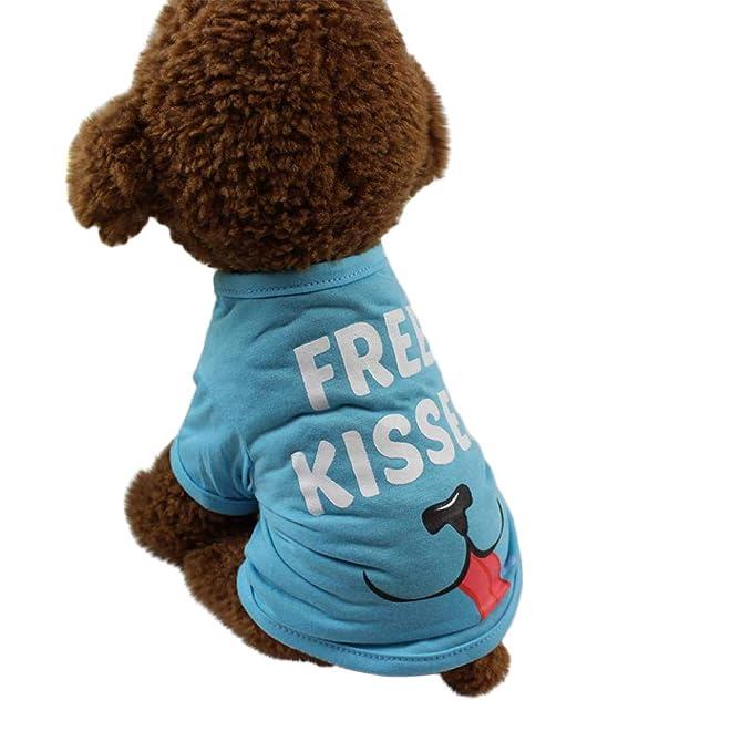 Amazon.com: Lethez - Camisa para perro, disfraz de cachorro ...