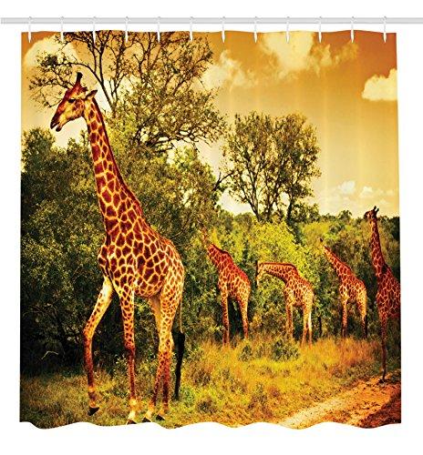 African Giraffe (Giraffe Shower Curtain Wildlife African Safari Decor by Ambesonne, Giraffe and Animals Art for Bathroom Decorations Kids Teens Wild Jungle Desert Themed Shower Curtain Orange Brown Beige Green)