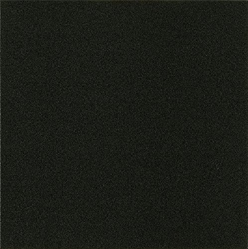 Armstrong Tile Colors - Armstrong FPD4101161 Solid Colors Alterna Vinyl Tile Flooring, Betcha Black