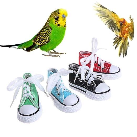 Ocamo 4pcs/Set Mini Zapatos de Lona Juego de Juguetes para Loro ...