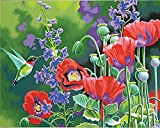 Dimensions Crafts Paintworks Paint by Number Kit, Hummingbird and Poppies