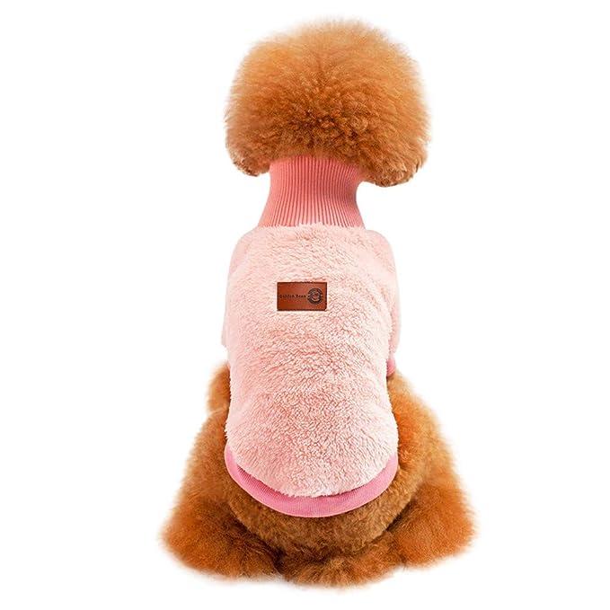Ropa para Mascotas,Dragon868 Invierno único cálido Perro de Gato Gruesa Ropa de Abrigo: Amazon.es: Ropa y accesorios