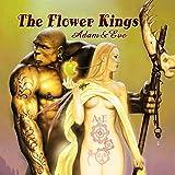 Adam + Eve