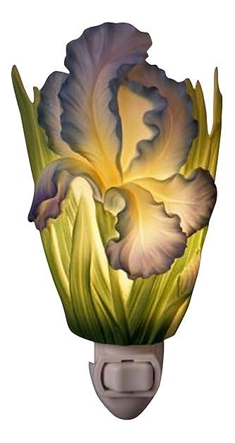 Captivating Bearded Iris Nightlight   Flowers Of Light Ibis U0026 Orchid Designs Photo Gallery