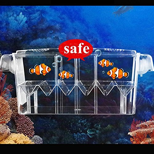4 Grides Breeding Incubator Isolation Box Fish Tank Aquarium Hatching Transparent Boxes Multifunctional Acrylic Fish Tank Holder by LEO_Pet supplies (Image #1)