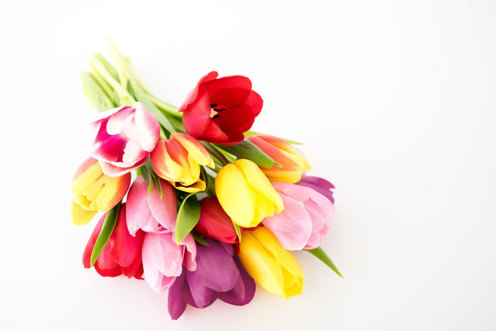 Flowers - Rainbow Tulip Bouquet - 15 Stems (Free Vase Included) by From You Flowers