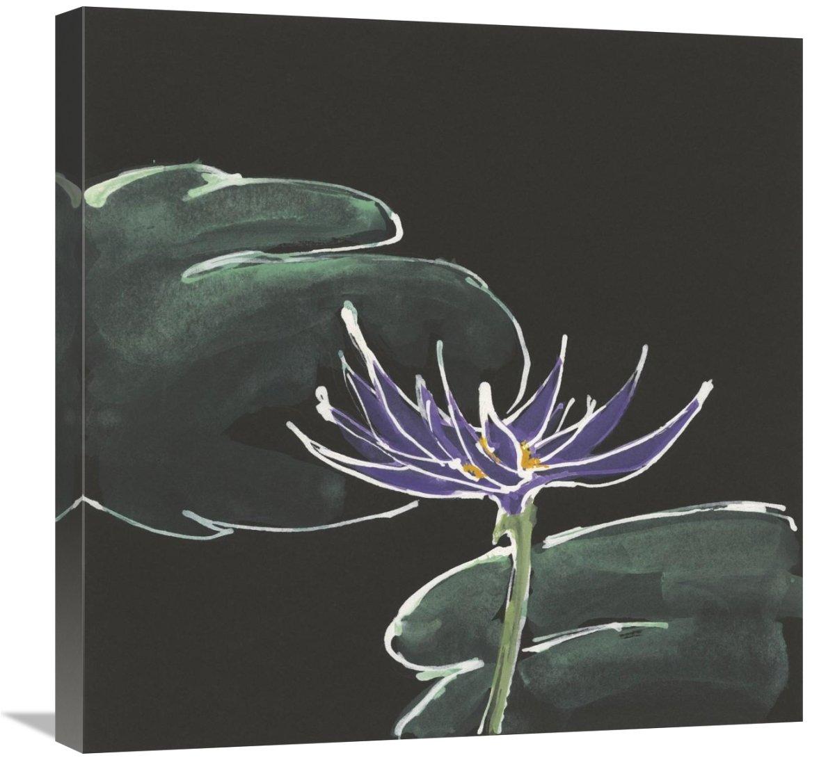 24 x 24 Lily on Black II Canvas Artwork Global Gallery Chris Paschke