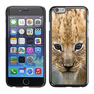 - CAT AFRICA LION SAFARI WILD PUPPY CUB EYES - - Monedero pared Design Premium cuero del tir???¡¯???€????€?????n magn???&rsqu