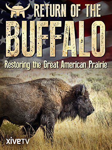 Return of the Buffalo: Restoring the Great American Prairie -