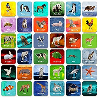 "36 Pair Animal Matching Game Flash Cards Erasable (Each Measures 2"" X 2"")"