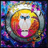 Toosvan Cat 5D Diamond Painting for Adults, Home Decor Clearance DIY Crystals Diamond Painting Rhinestone Painting Needlework Cross Stitch Counted Kit 5D Diamond Painting Embroidery Wall Art Decor (I)