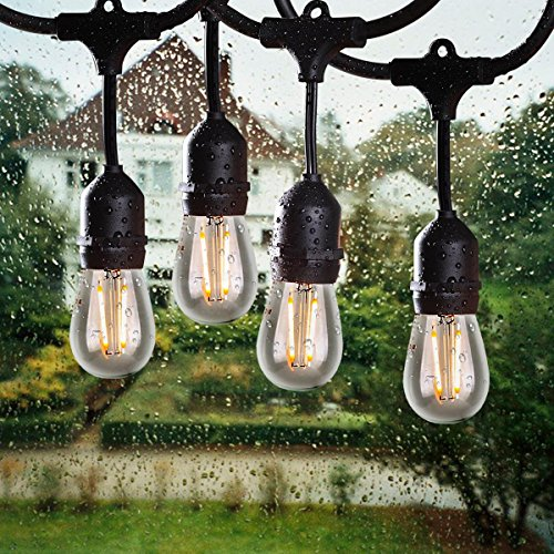Outdoor Christmas Candle Bulb Lights in Florida - 2