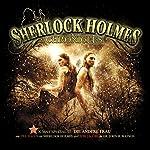 Die andere Frau (Sherlock Holmes Chronicles - X-MAS Special 3) | Klaus-Peter Walter