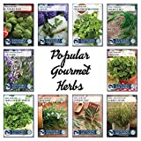 10 Variety Culinary Herb Collection and 96 Page