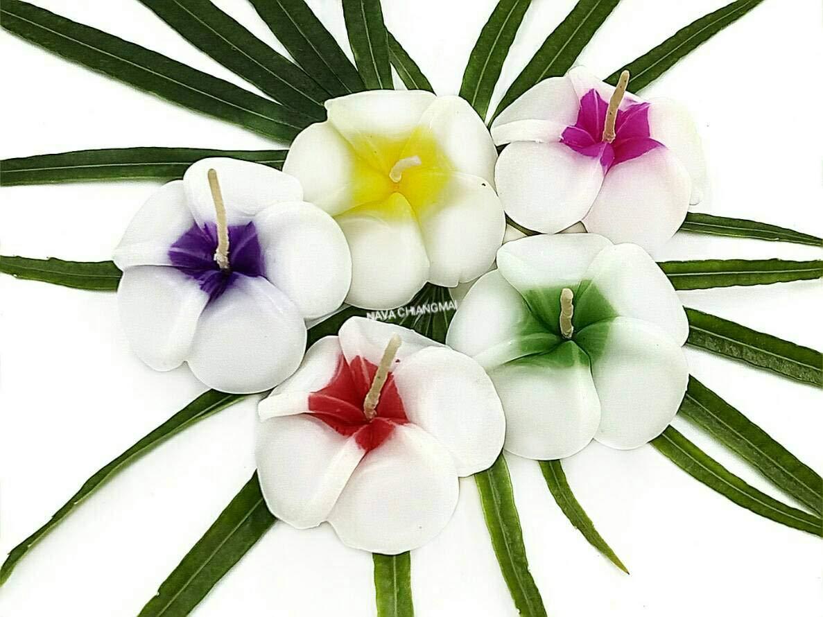 NAVA CHIANGMAI Plumeria Flower Floating Candles 10 pieces / 1 Set by NAVA CHIANGMAI (Image #1)