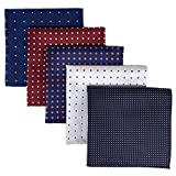 Shlax&Wing 5 Pieces Assorted Mens Pocket Square Handkerchiefs Set