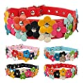 Beirui Cute PU Leather Dog Collar with Adorable Flowers