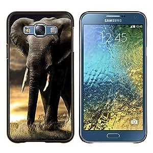 - INDIAN TUSK ELEPHANT AFRICA SUNSET TRUNK - Caja del tel¨¦fono delgado Guardia Armor- For Samsung Galaxy E7 E7000 Devil Case