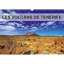LES VOLCANS DE TENERIFE 2019: Volcans, plantes et pins parsement les coulees de lave.