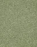 Koeckritz 10'x12′ Sage Leaf 30 oz Durable Cut Pile Area Rug. Multiple sizes and shapes to choose from. Review
