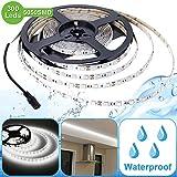 Lighting EVER Lampux 12V Flexible Waterproof LED Strip Lights, 6000K Daylight White, 300 Units 5050 LEDs, 218lm/ft, Light Strips, Pack of 5M