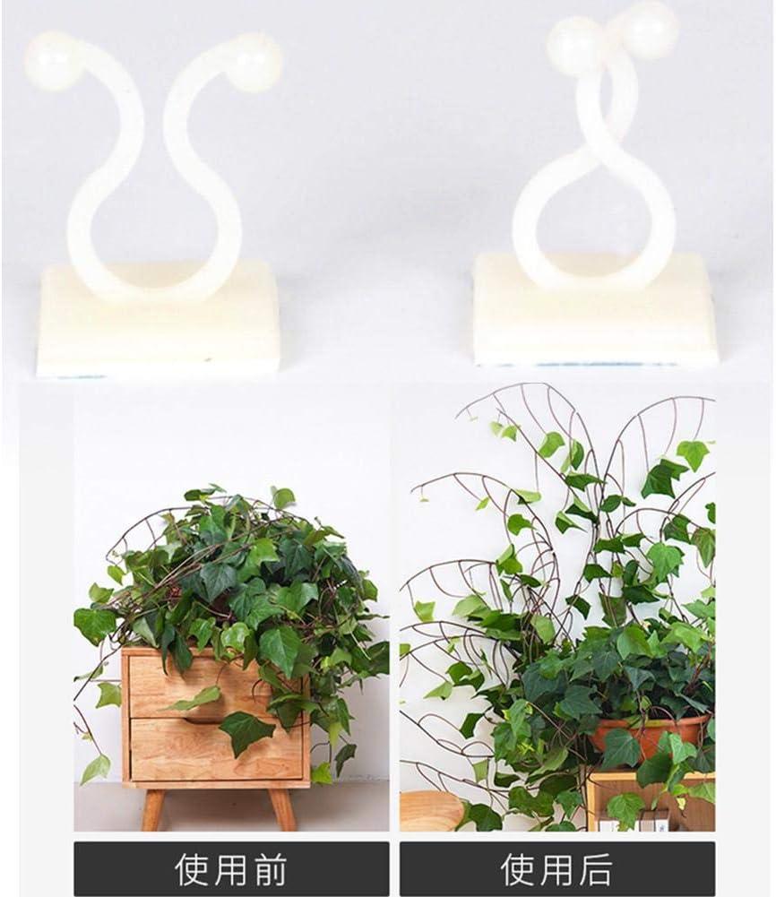 100PCS Garden Green Plant Support-B/ündelklemme Pflanzenpflanzungspflege Pepional Gem/üsepflanzen-St/ützclip Green Dill Climbing Wall Fixer Nahtloser Haken