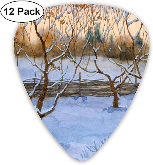 Cavdwa Garden In Snow - Púas para Guitarra (12 Unidades, 0,96 mm ...