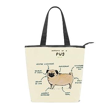 548b873a1bf6 Amazon.com: Canvas Anatomy Of A Pug Tote Bag Zipper Closure Shoulder ...