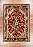 Noble Medallion Red Persian Floral Oriental Formal Traditional Area Rug 7x10 ( 6'7'' x 9'6'' ) Easy to Clean Stain Fade Resistant Shed Free Modern Contemporary Transitional Soft Living Dining Room Rug