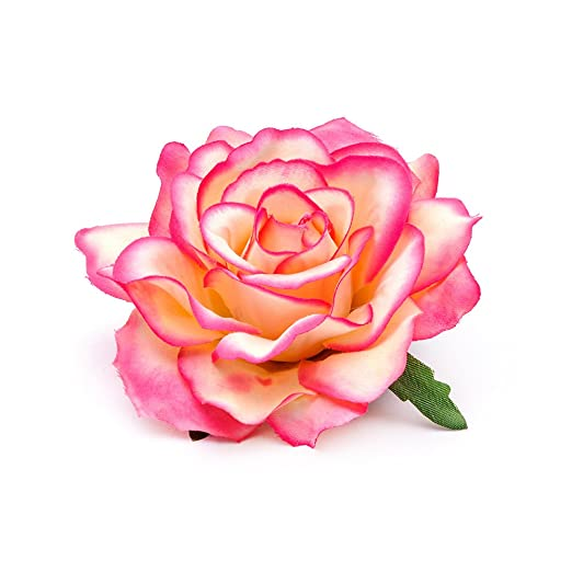 Amazon dreamlily rose flower hair clip flamenco dancer pin up dreamlily rose flower hair clip flamenco dancer pin up flower brooch bc10 1 mightylinksfo