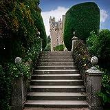 Photography Backdrop - Castle Steps - 10x10 Ft. - 100% Seamless Polyester