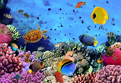 Laeacco 5X3FT Vinyl Photography Backdrop Wonderful Undersea World Fishes and Coral Scene Background for Sweet Baby Kids Girls Lovers Childern Adults Portraits Camera Shooting Studio -