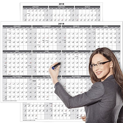 Large 2018 Yearly Wet and Dry Erase Wall Calendar - 24 x 36 Inches - 2-Sided Reversible Vertical Horizontal by Delane - Mounting Tape Included (AWC-001) (White)