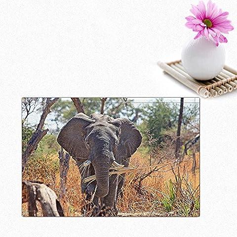 NYMB The elephant in the grass Bath Rugs, Non-Slip Rectangle Floor Entryways Outdoor Indoor Front Door Mat,16X24 Inches Bath (Elephant Floor Rug)