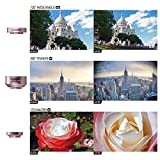 MOMAX Universal 4 in 1 Cell Phone Camera Lens Kit - 15x Macro Lens + Wide Angle Lens + Fish Eye Lens and CPL Filter for iPhone, Samsung& Most Smartphones
