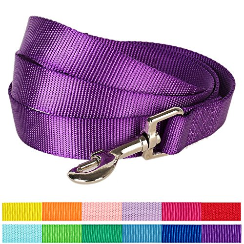 "Blueberry Pet 12 Colors Durable Classic Dog Leash 5 ft x 3/8"", Dark Orchid, X-Small, Basic Nylon Leashes for Puppies"