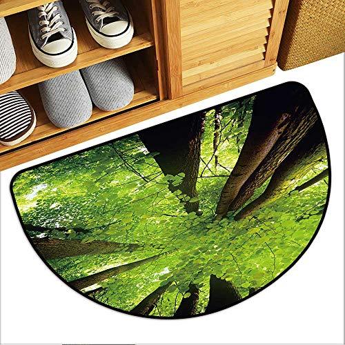 Simple Modern Carpet Beech Canopy Semi-Circular Floor Mats W23xH15 INCH (Semi Canopy Circular)