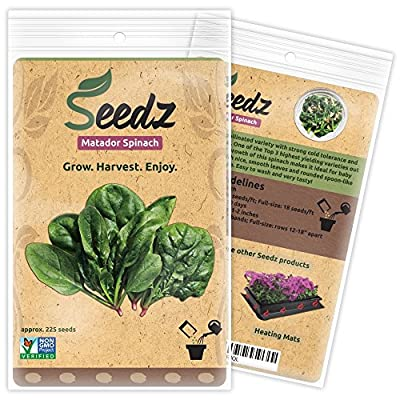 CERTIFIED ORGANIC SEEDS (Appr. 225) - Matador Spinach Seeds - Open Pollinated Vegetable Seeds - Organic, Non Hybrid Garden Seeds - USA