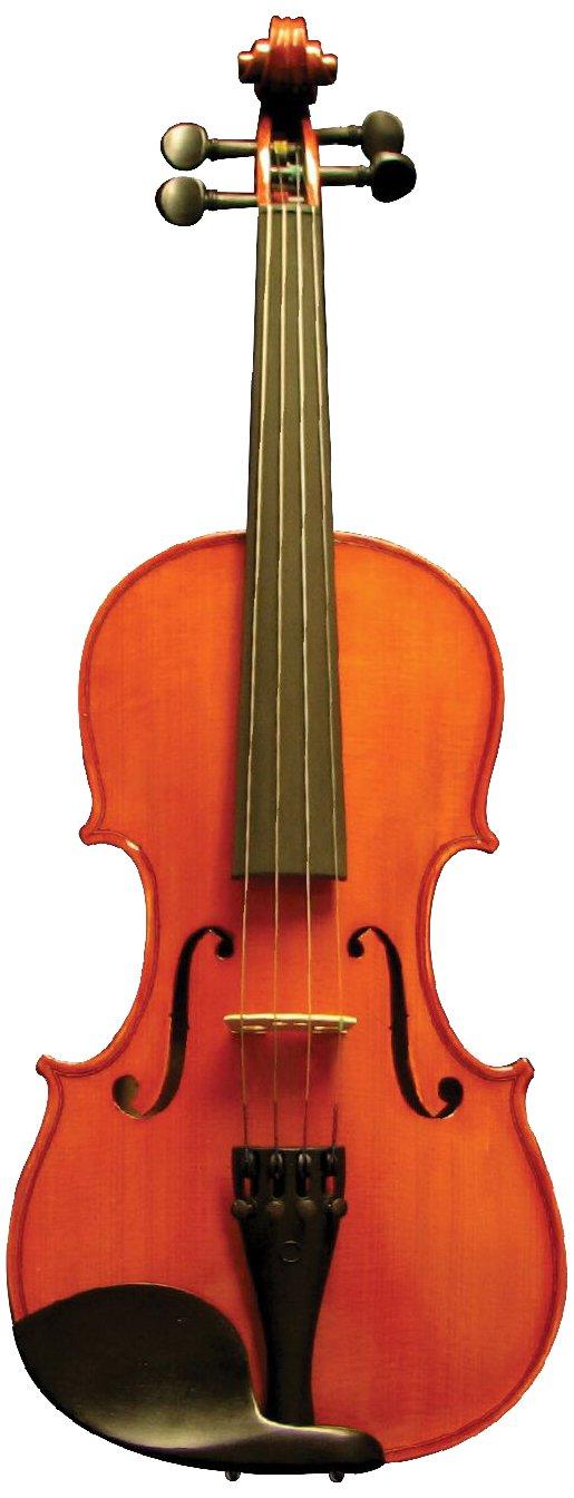 Corde di Salice CS125VN4/4 Beginner Upgrade Violin Package - Secondo, 4/4 by Corde di Salice