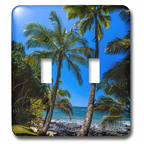 3dRose lsp_207888_2 Hawaii - Tropical Coastline of Princeville Double Toggle Switch by 3dRose