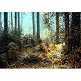 wall26 - A Breathtaking View as the Sun Shines Through the Forest on a Misty Day. - Removable Wall Mural | Self-adhesive Large Wallpaper - 66x96 inches