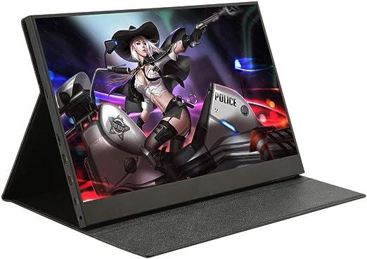 ZYLFN Monitor portátil de 15,6 Pulgadas USB C 1920 x 1080 IPS FHD ...
