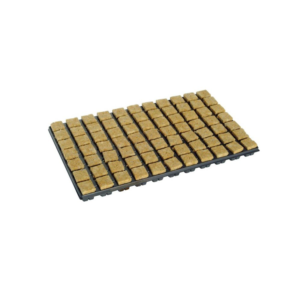 Hydroponics Cutting Tray - 77 Rockwool Propagation Cubes 1.4''